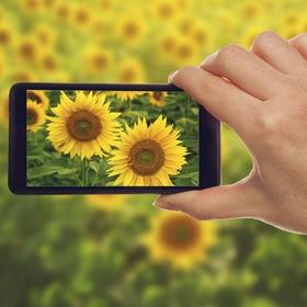 SmartPhoneBlogPhoto1