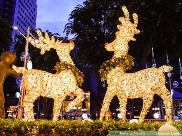 christmaslights3